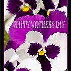 Pansy Mother's Day Card by judygal