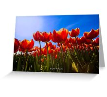We need Spring and sunshine Greeting Card