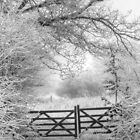Gate to winter wonderland by Mark Thompson