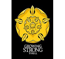Game of Thrones - Tyrell house Photographic Print