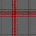 01603 Auchairne Grey Tartan Fabric Print Iphone Case by Detnecs2013