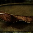 Grungy Leaf by Margi