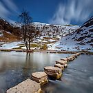 Stepping Stones by Paul Richards