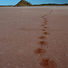 Footsteps Lake Ballard WA by andypatt