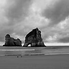 Archway Islands at Wharariki Beach by Duncan Cunningham