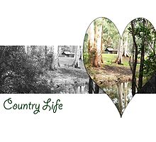 Country Life by WendyJC