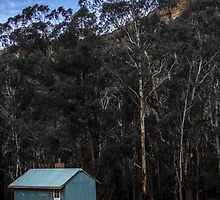 The Little Blue House, Newnes by Mandy  Harvey