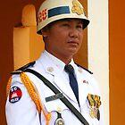 Guarding the Royal Palace, Phnom Penh by sarahgotts