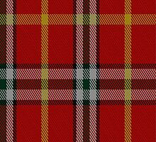 01657 Benedict Tartan Fabric Print Iphone Case by Detnecs2013