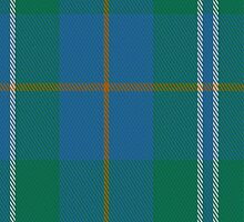 01667 Bermuda Tartan Fabric Print Iphone Case by Detnecs2013