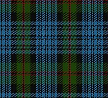 01676 Bijral Tartan Fabric Print Iphone Case by Detnecs2013