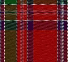 01680 Birral - Burrell Clan/Family Tartan Fabric Print Iphone Case by Detnecs2013
