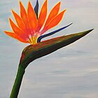 Bird of Paradise by Guy Wann