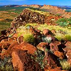 East MacDonnell Ranges by Kevin McGennan