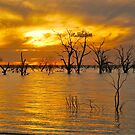 Menindee Sunset by Penny Smith