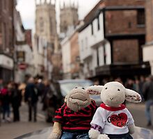 Day Out in York by twinnieE