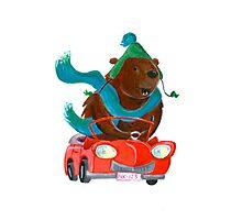 Bear in car Photographic Print