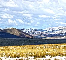 Cheviot Hills Northumberland by Roger Hall