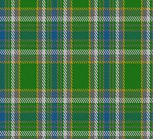 01716 Boucherville District Tartan Fabric Print Iphone Case by Detnecs2013
