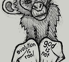 Evolution Is Real, God Is Not by Brett Gilbert