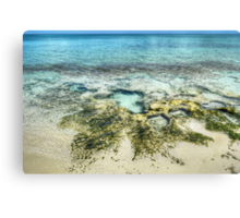 Beach in Western Nassau, The Bahamas Canvas Print