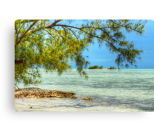 Paradise on Earth at Coral Harbour in Nassau, The Bahamas Canvas Print