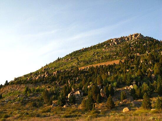 Montana by Stephen Oravec