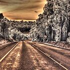 South West Hwy IR by BigAndRed