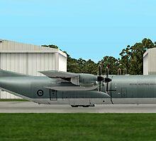 RAAF  Lockheed C-130 Hercules  by Walter Colvin