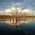 Reflections at Lyrup Flats by Cindy Hitch