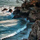 Castle Cove by Michael Carter