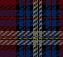 01775 Brooks Brothers (WCWM) Tartan Fabric Print Iphone Case by Detnecs2013