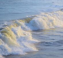 Catch A Wave by ©Dawne M. Dunton