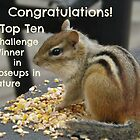 Top Ten challenge winner banner by Jeanette Muhr