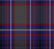 01783 Broz Sanz Tartan Fabric Print Iphone Case by Detnecs2013