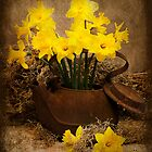 Rusty Teapot in the Spring by Trudy Wilkerson