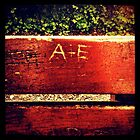A+E Bench  by lanesloo