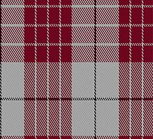 01804 Buchanan #5 Clan/Family Tartan Fabric Print Iphone Case by Detnecs2013