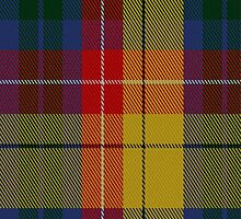 01805 Buchanan #6 Clan/Family Tartan Fabric Print Iphone Case by Detnecs2013