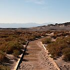 The Path to Nowhere - Death Valley N. P. by Mark Heller