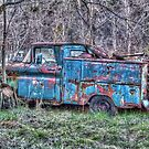 Old Work Truck by James Brotherton