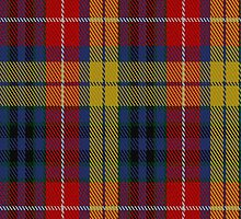 01813 Buchanan Incorrect Fashion Tartan Fabric Print Iphone Case by Detnecs2013