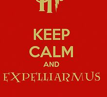 Expelliarmus by Vinizzz