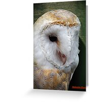 """""""Taken at the """"Screech"""" Owl Sanctuary""""  """" Name of the owner"""" Greeting Card"""