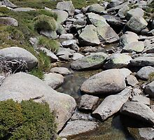 Breezy Alpine Stream by ec-photography