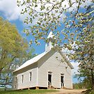 Methodist Church Cades Cove by dc witmer