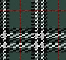 01830 Burberry Hunting Tartan Fabric Print Iphone Case by Detnecs2013