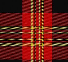 01831 Burke Tartan Fabric Print Iphone Case by Detnecs2013