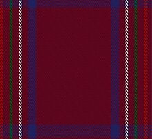 01834 Burnett of Leys Hunting Clan/Family Tartan Fabric Print Iphone Case by Detnecs2013