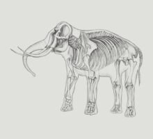 Skelephant by Maria Drummond